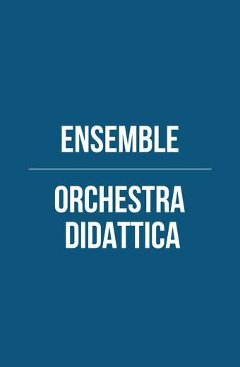 Orchestra didattica